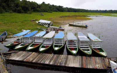 Klub Odkrywców i Reporterów Wyprawa do Amazonii